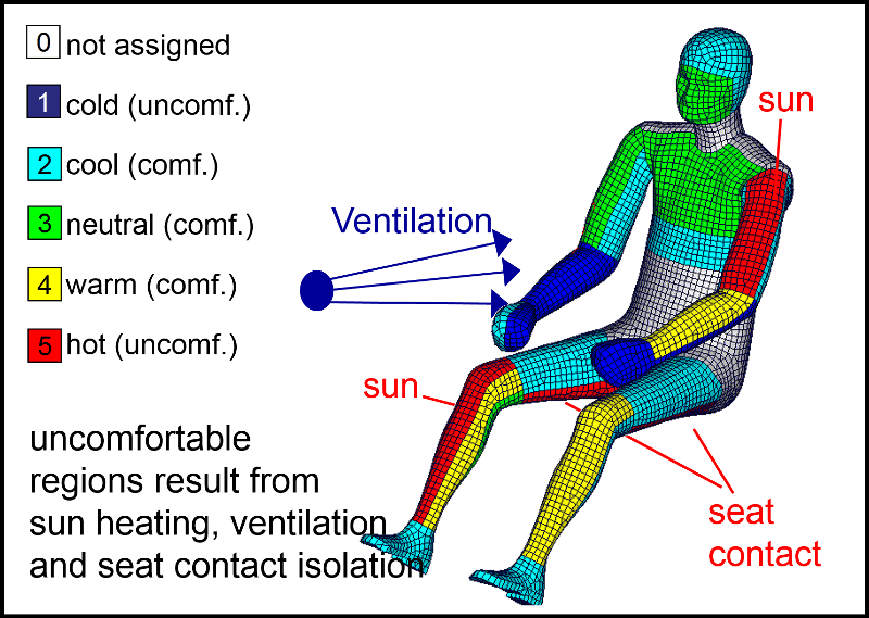 Image of Exemplary Thermal Comfort Results for a Sitting Human