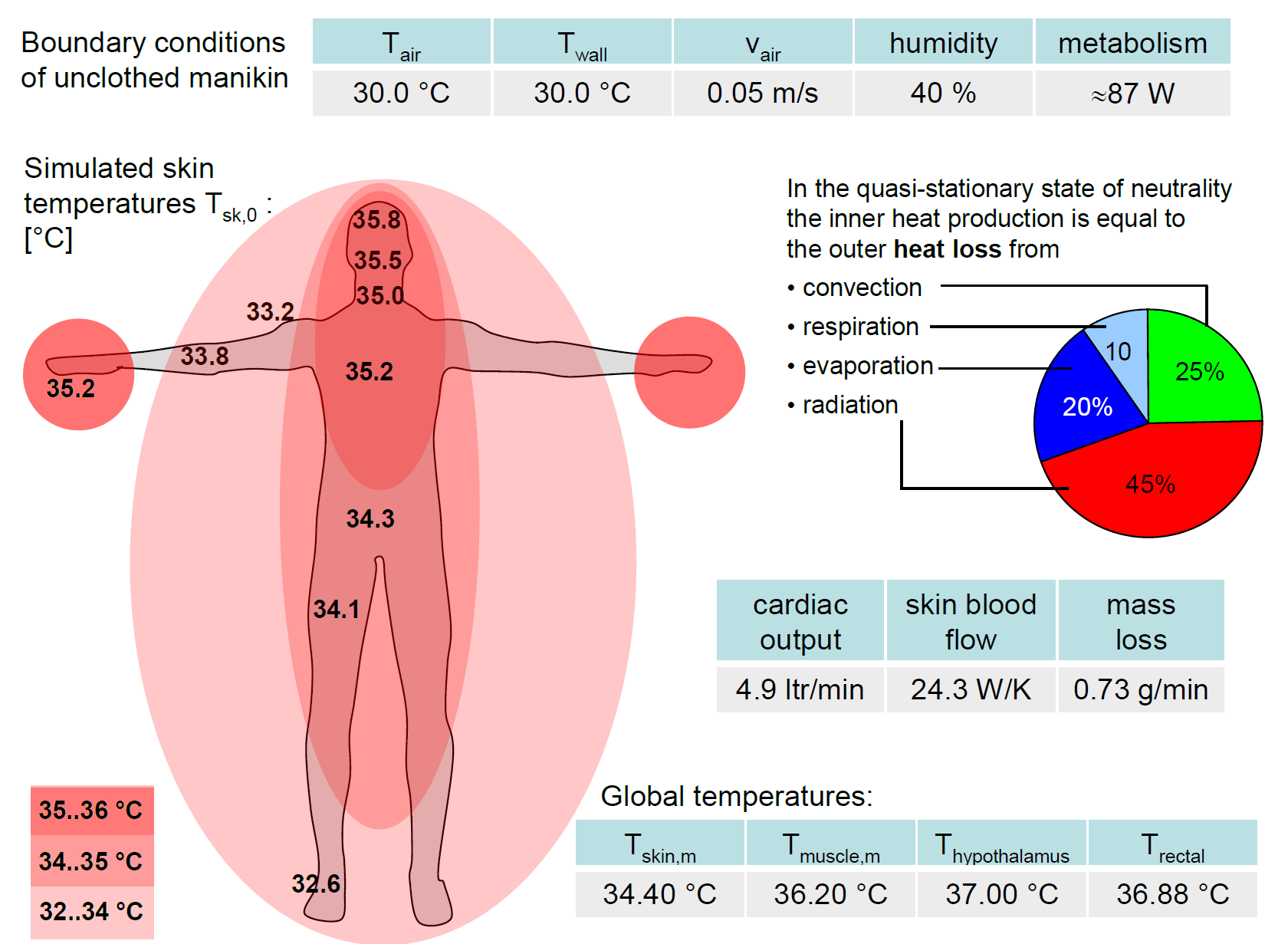 Schematic showing Typical Temperature Results and other Quantities for Thermal Neutrality State of Virtual Human Thermal Model