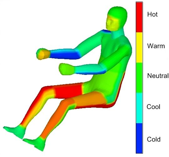Image showing Local Comfort Results on Virtual Sitting Human Model